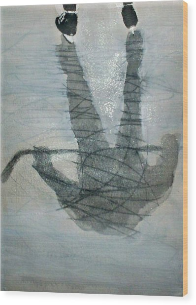 Shinny Shilouette Wc Wood Print