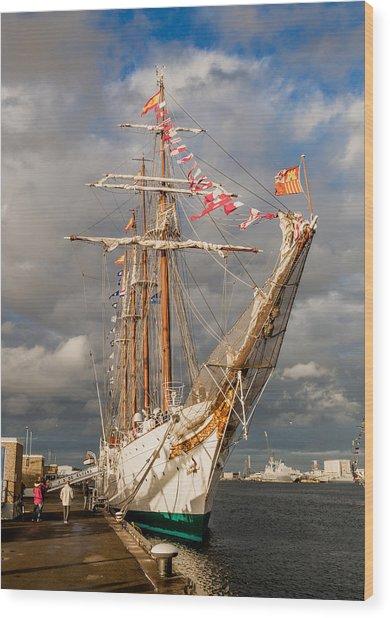 Ship In The Sun Wood Print