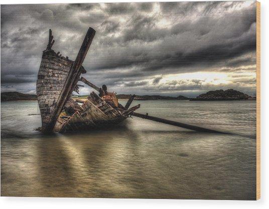 Ship Wreck Wood Print by Craig Brown
