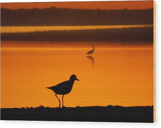 Shore Birds Wood Print