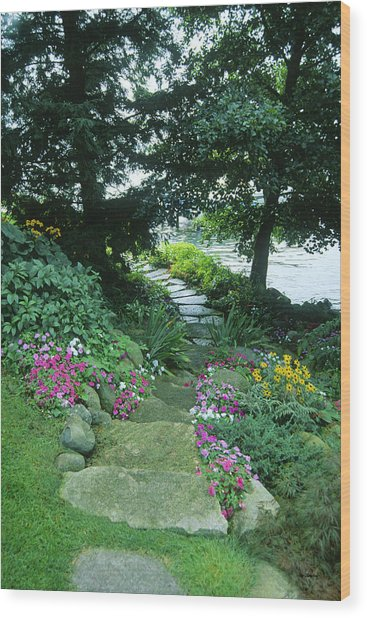 Shore Path - Lake Geneva Wisconsin Wood Print