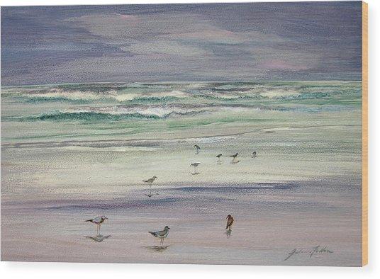 Shoreline Birds IIi Wood Print