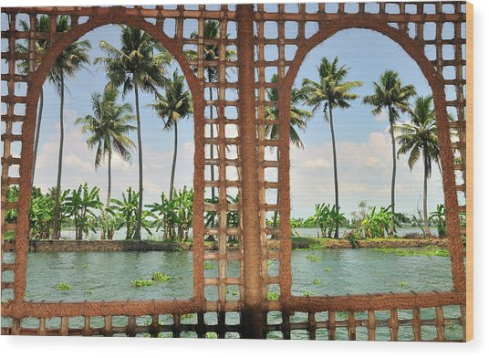 Shoreline Of The Kerala Backwaters Wood Print