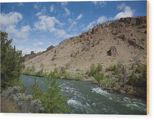Shoshone River Wood Print