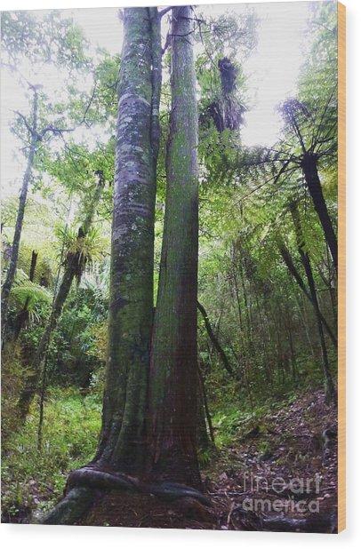 Siamese Twin Trees Wood Print