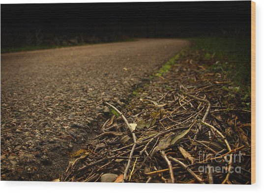 Side Of The Road Wood Print by Jolanta Meskauskiene