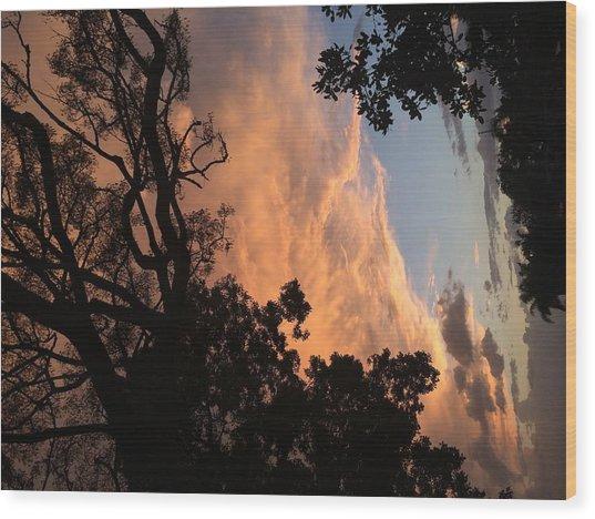 Side Sky Wood Print