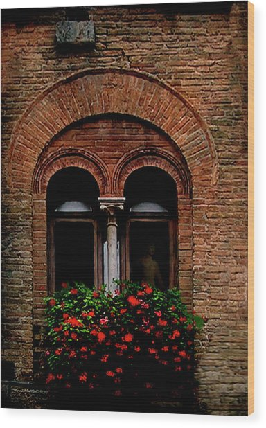 Sienna Window Wood Print