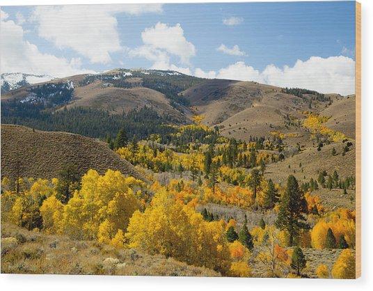 Sierra Foliage Wood Print