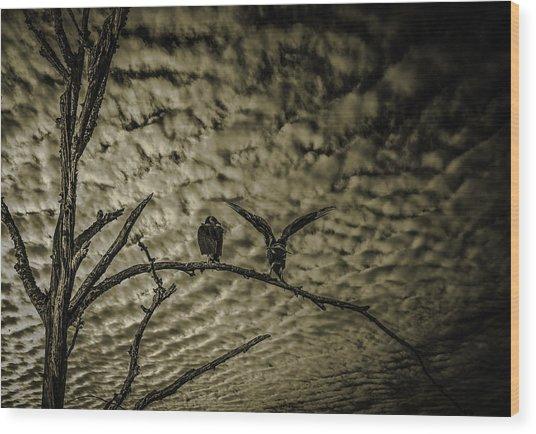 Sierra Madre  Wood Print by Uzi Gallery