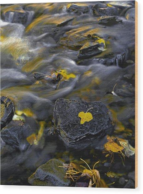 Sierra Stream Wood Print