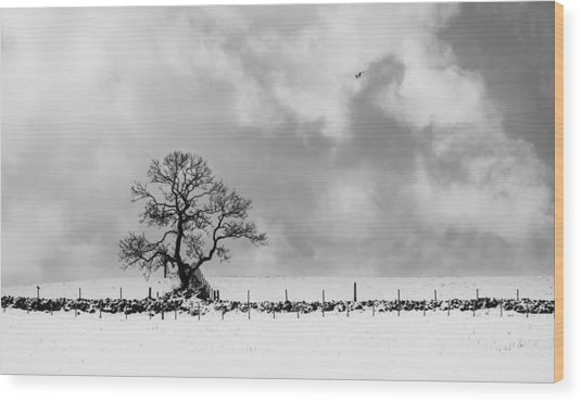 Sign Of Winters End Wood Print