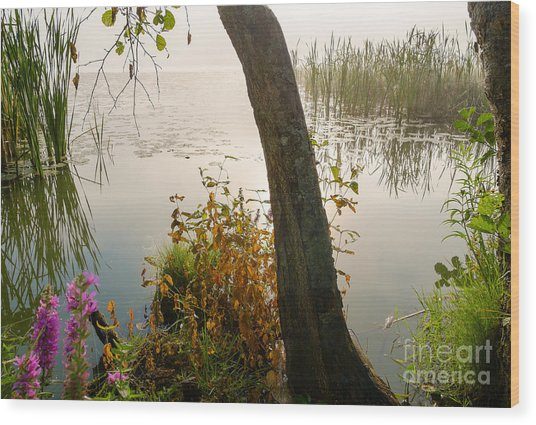 Silent Lakeside Wood Print