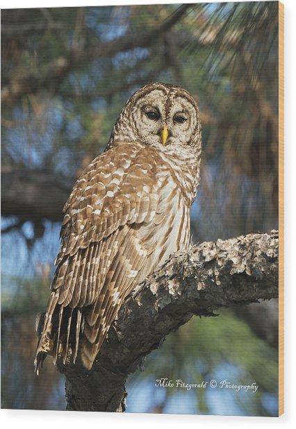 Silent Observer Wood Print