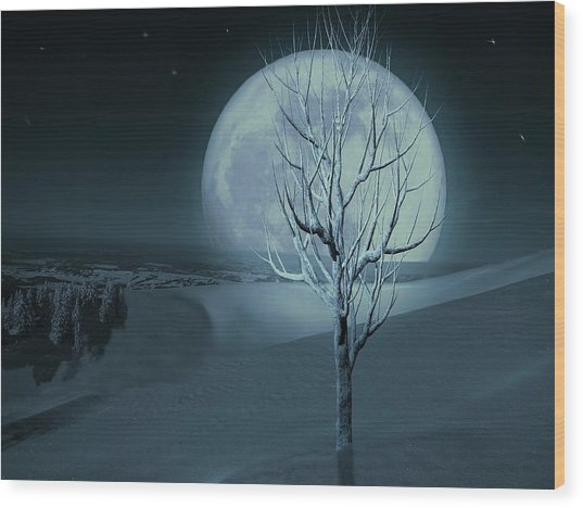 Silent Winter Evening  Wood Print