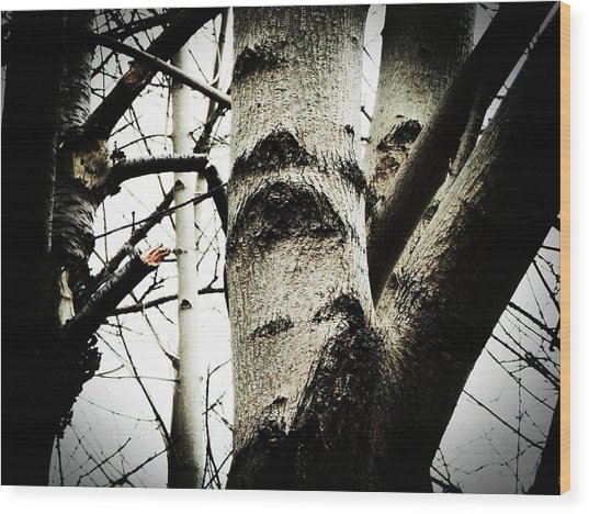 Silent Witness Wood Print