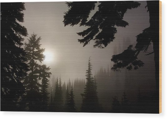 Silhouettes Of Trees On Mt Rainier Wood Print