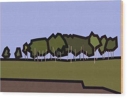 Silver Birch Wood Print by Kenneth North