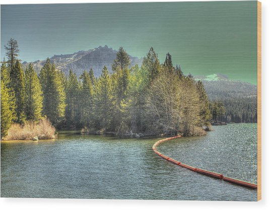 Silver Lake 3 Wood Print