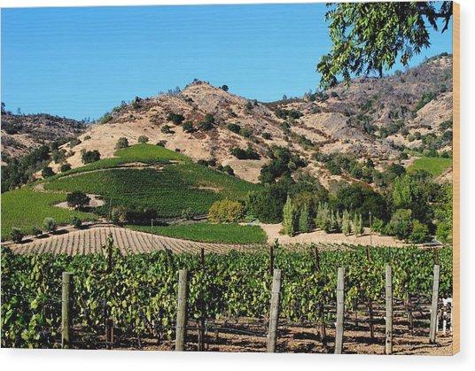 Silverado Trail  Napa Valley California Wood Print by Ron Bartels