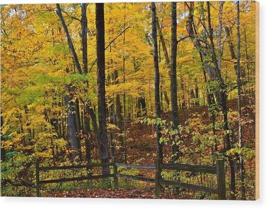 Simple Landscape Wood Print by Julie Franco