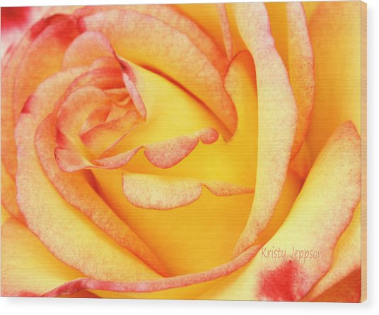 Simple Rose 2 Wood Print