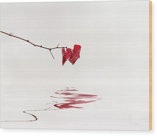 Simply Leaves Wood Print