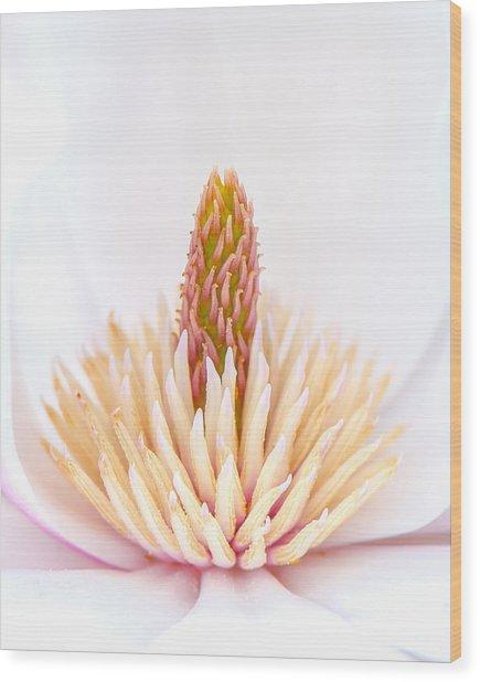 Simply Magnolia Wood Print