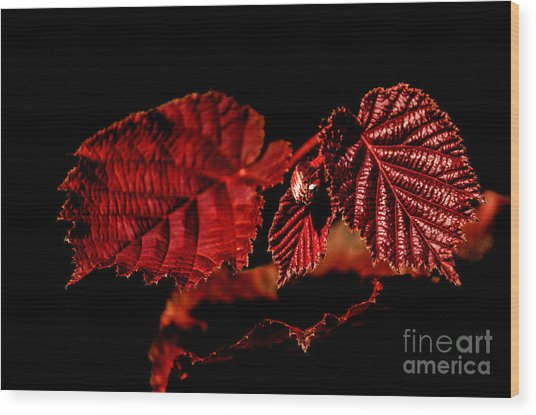 Simply Red Wood Print