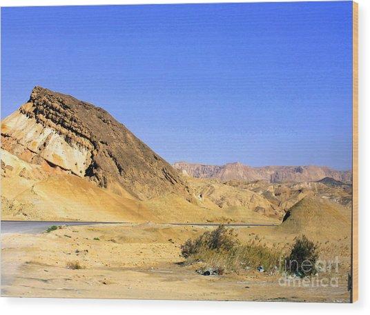 Sinai Desert  Wood Print