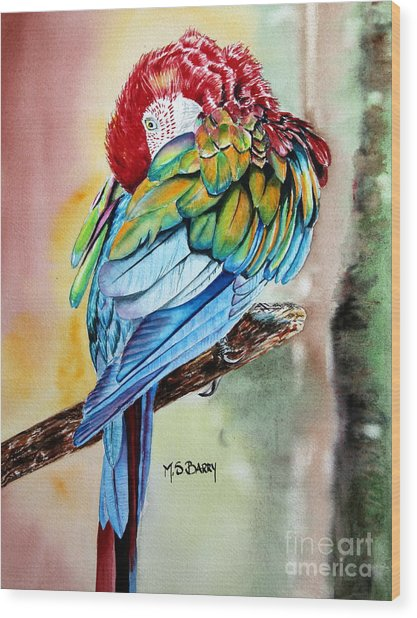 Sinbad Wood Print