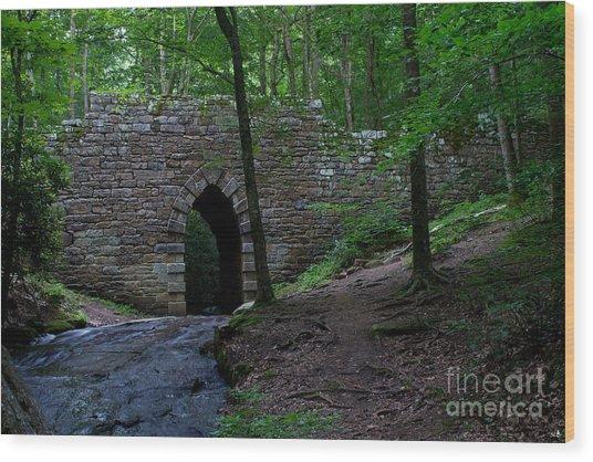 Since 1802 Poinsett Bridge Wood Print