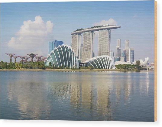 Singapore Skyline Wood Print by Kokkai Ng