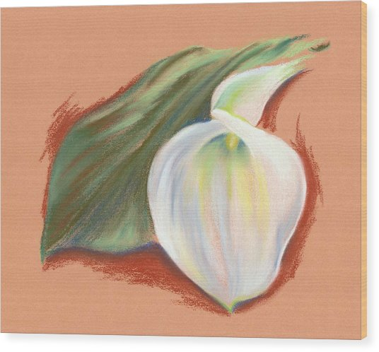Single Calla Lily And Leaf Wood Print
