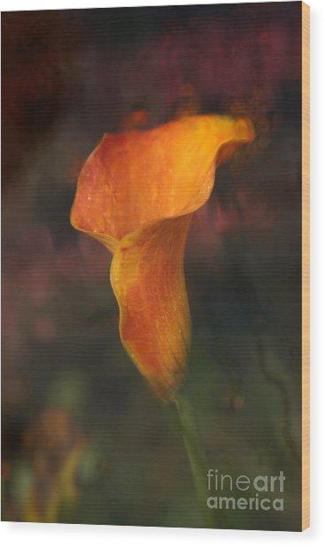 Single Orange Cala Wood Print by Jennifer Apffel