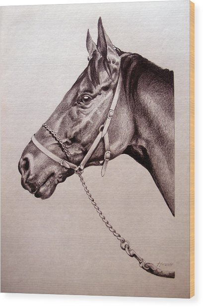 Sir Alfred 2 Wood Print by Patricia Howitt