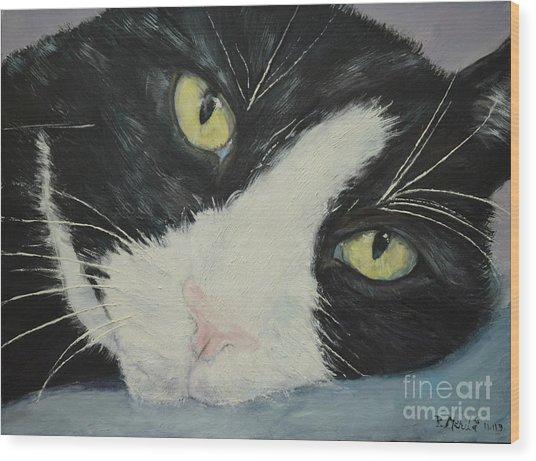 Sissi The Cat 1 Wood Print
