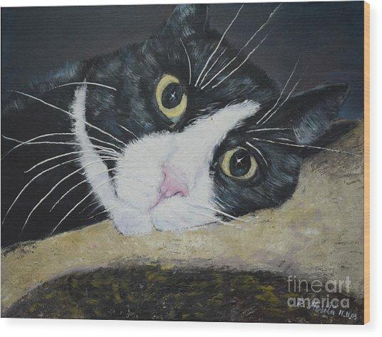 Sissi The Cat 3 Wood Print