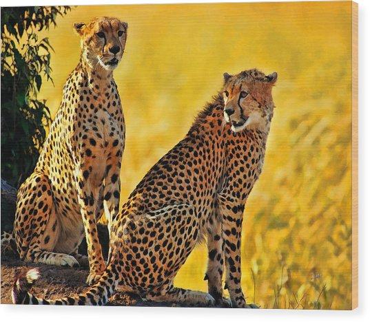 Sister Cheetahs Wood Print