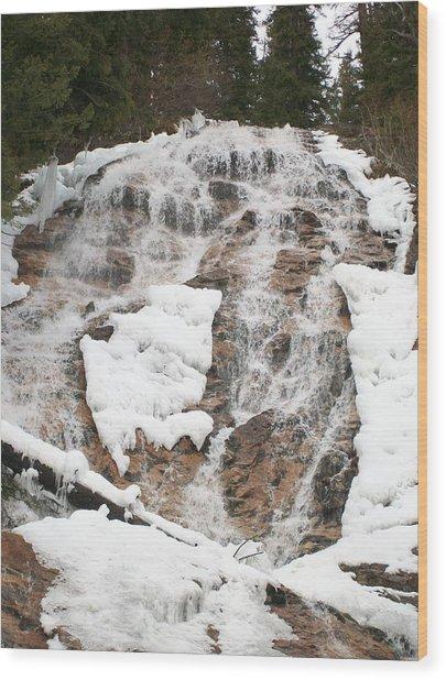 Skalkaho Falls Wood Print