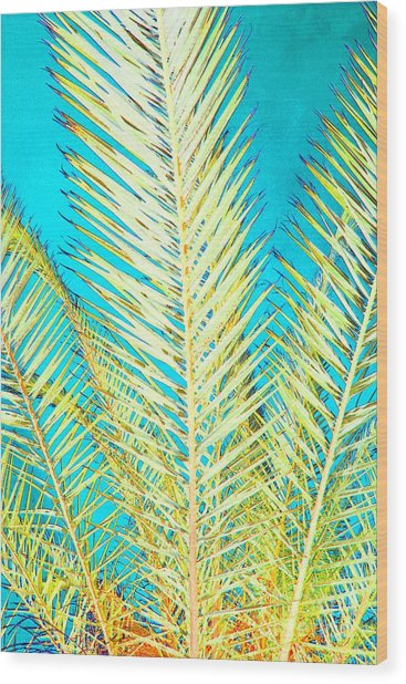Sketchy Palm Fronds Wood Print