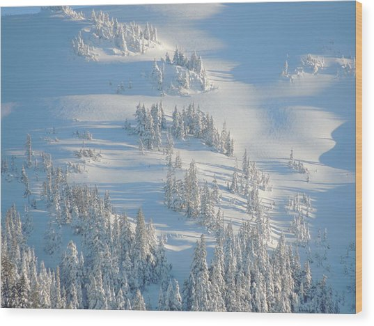 Ski Wood Print
