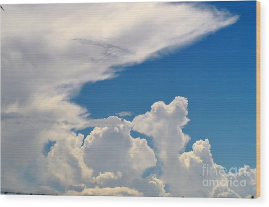 Skies-nature Wood Print by Sarah Loveland