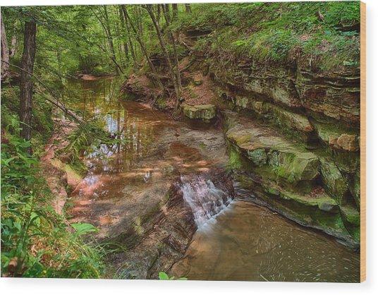 Skillet Creek Wood Print