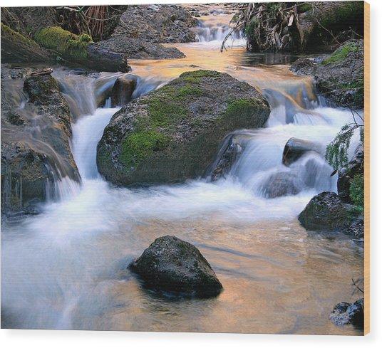 Skokomish River Wood Print