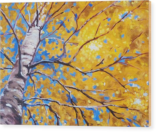 Sky Birch Wood Print