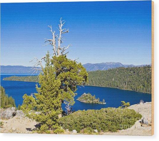 Sky Blue Water - Emerald Bay - Lake Tahoe Wood Print