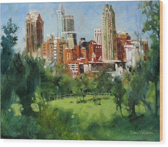Skyline From Dix Hill Wood Print