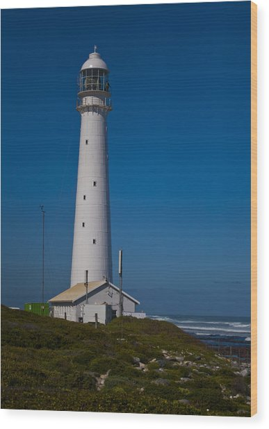Slangkop Lighthouse Wood Print by Tom Hudson