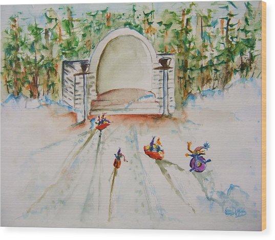 Sledding At Devou Park Wood Print
